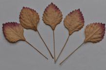 LIGHT BROWN Oval Rhamboidal (25mm) Mulberry Paper Leaves